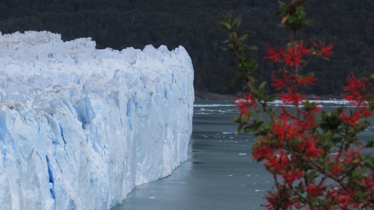 patagonia-canon-bjorn-014