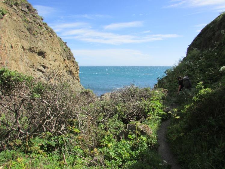 California 041